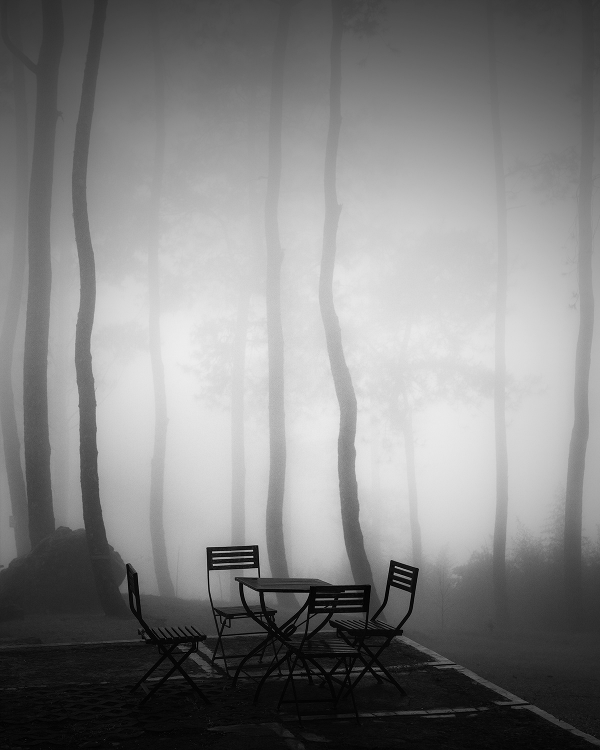 Image may contain: fog, furniture and tree