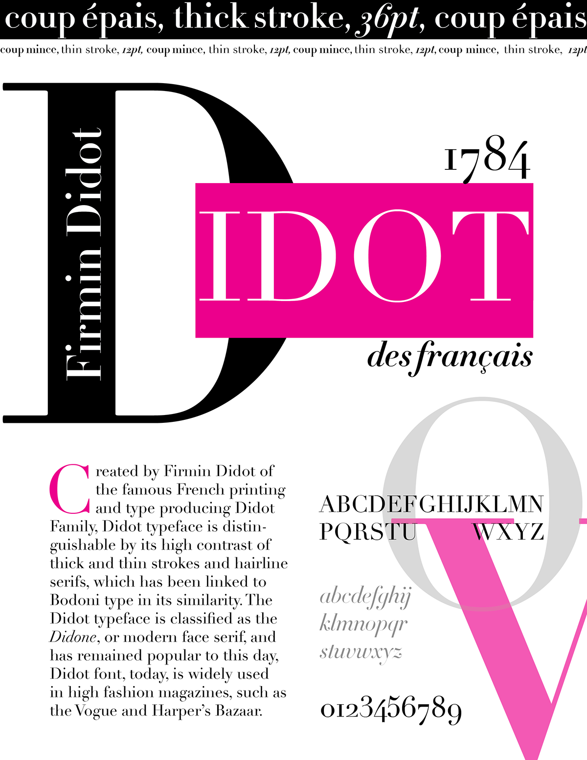 Font Flyer Project - Didot on Student Show