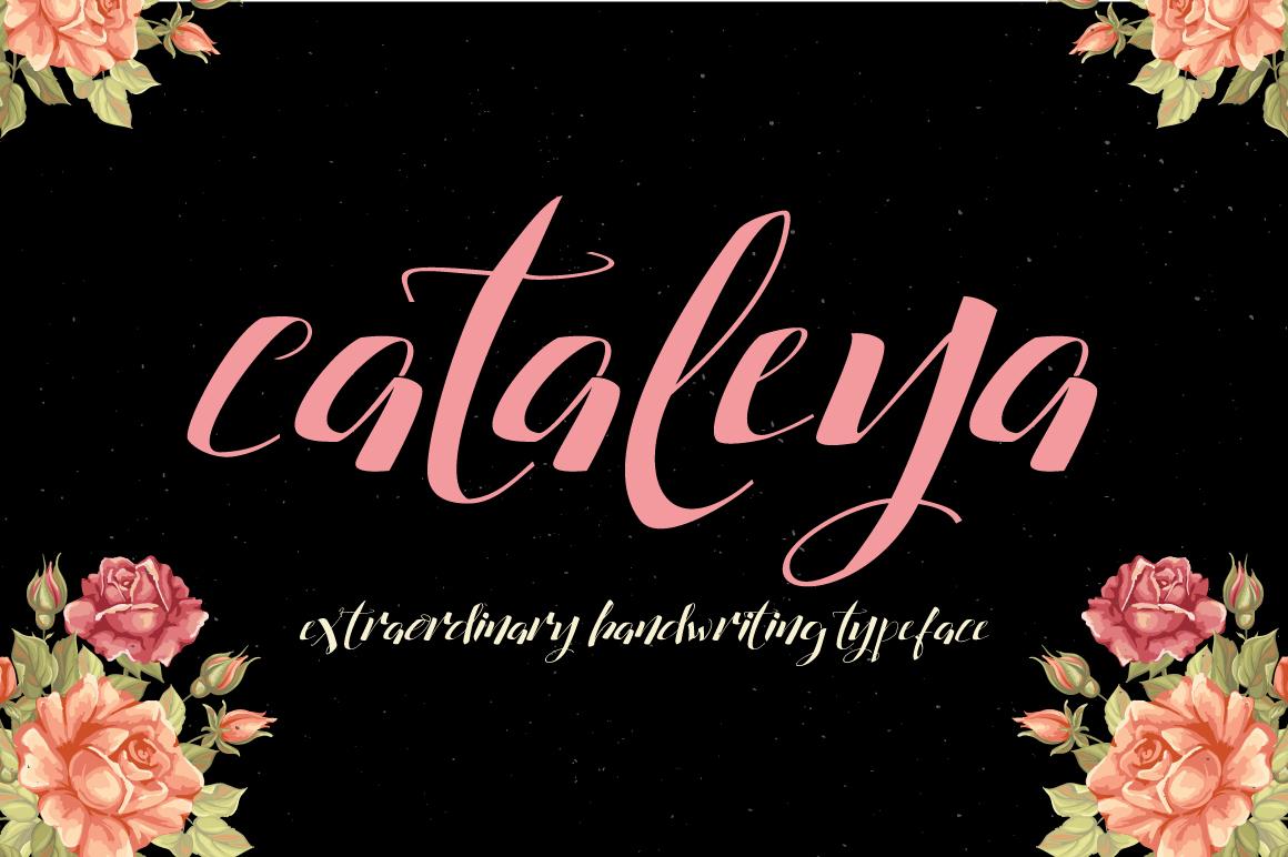 font free download Script Typeface simple clean swash modern