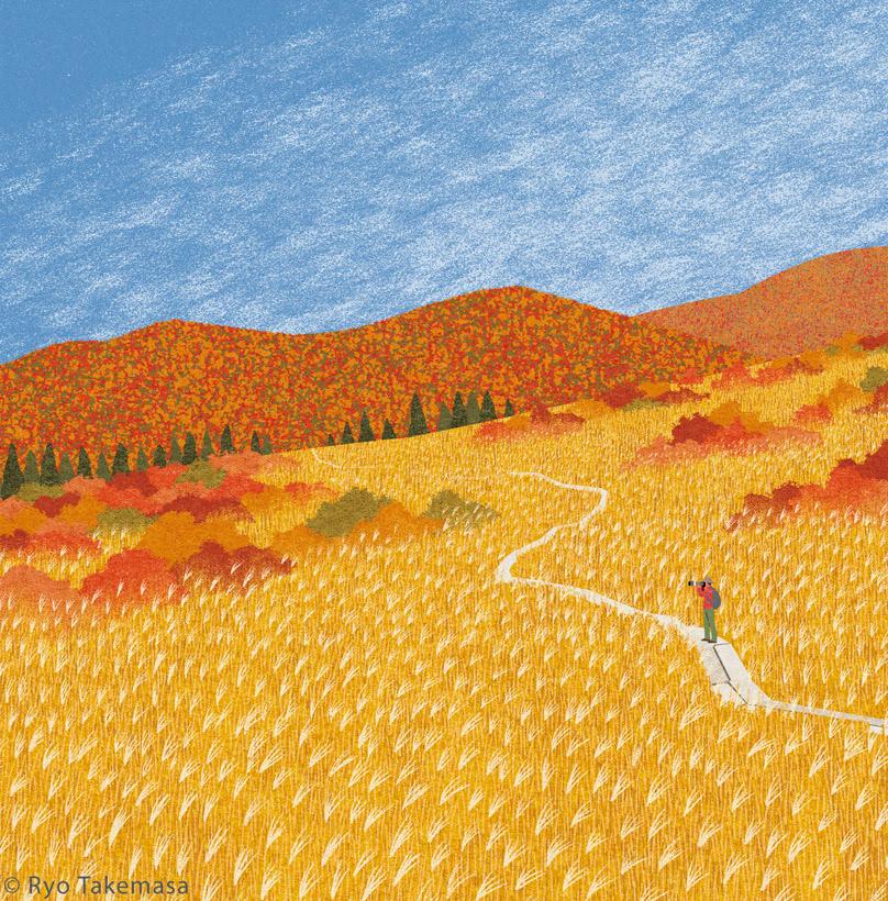 autumn autumn colors autumn tints Fall field grass Landscape Nature
