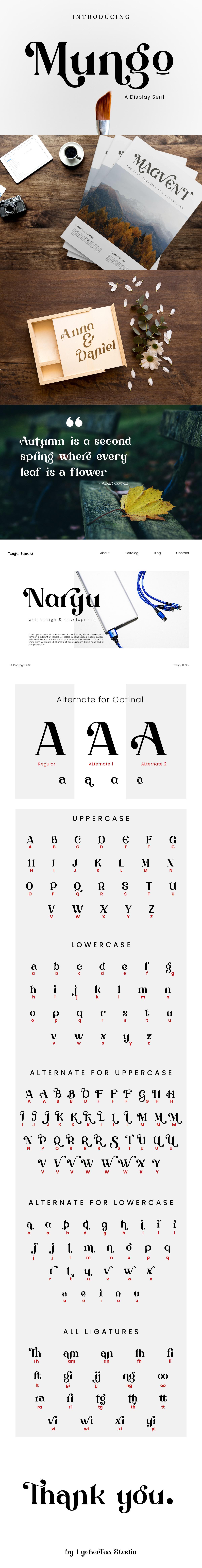 display font Fashion  Layout Logotype magazine minimal modern sans serif type design typography
