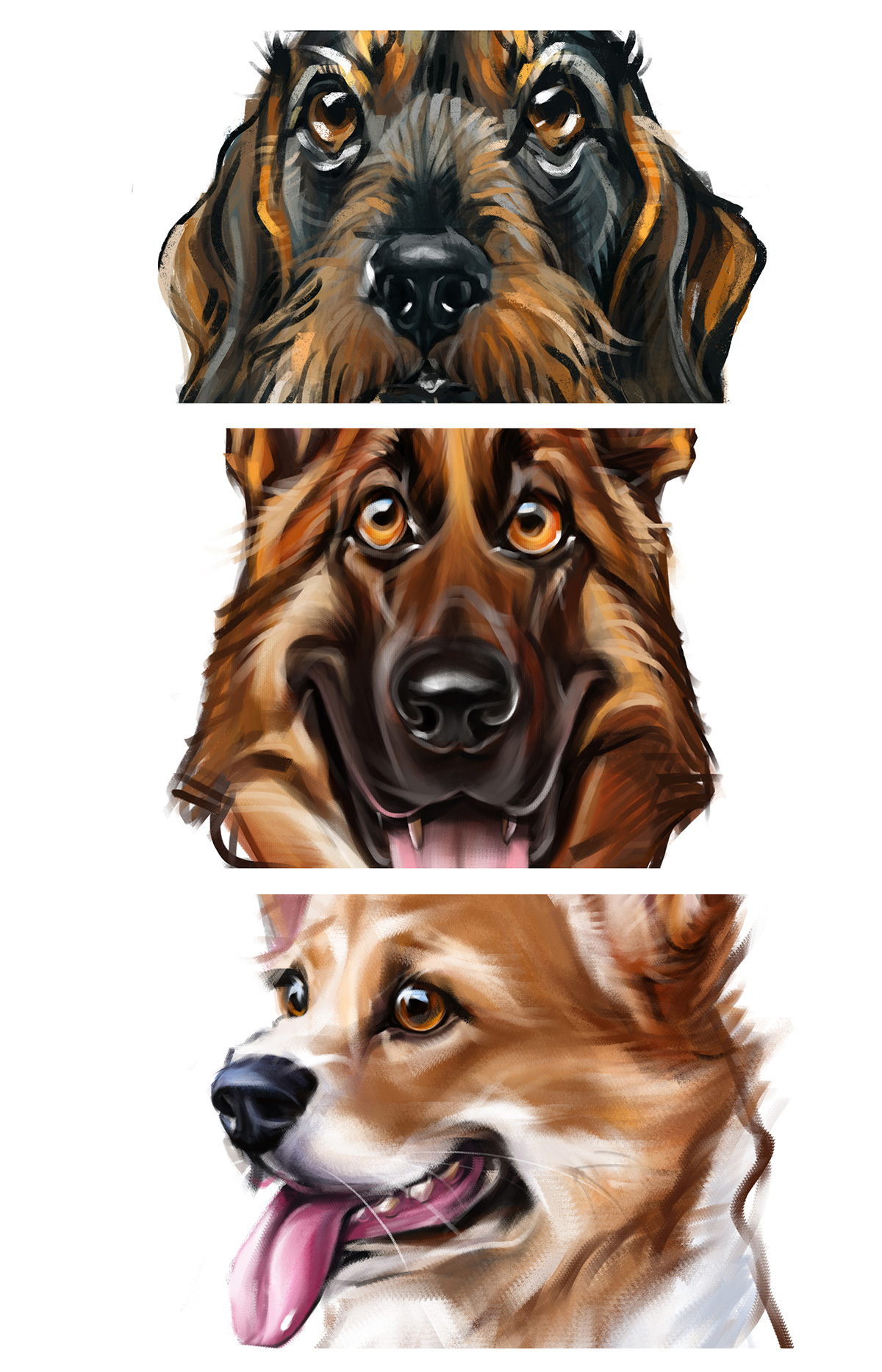 dog animals Drawing  sketching new year Pet yelena yefimova Riga Latvia 2D