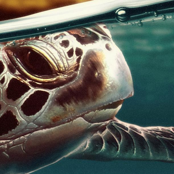 sea turtle wallpaper Photo Manipulation  Turtle sea sunlight Sun sunset conceptual shark warm genoarguelles