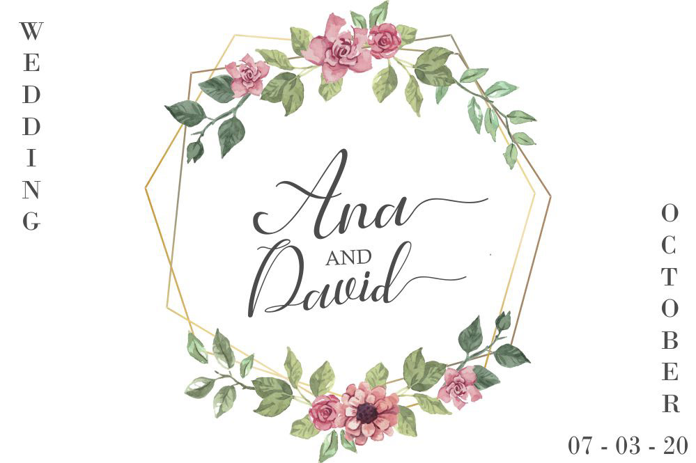 font wedding romantic elegant branding  logo script