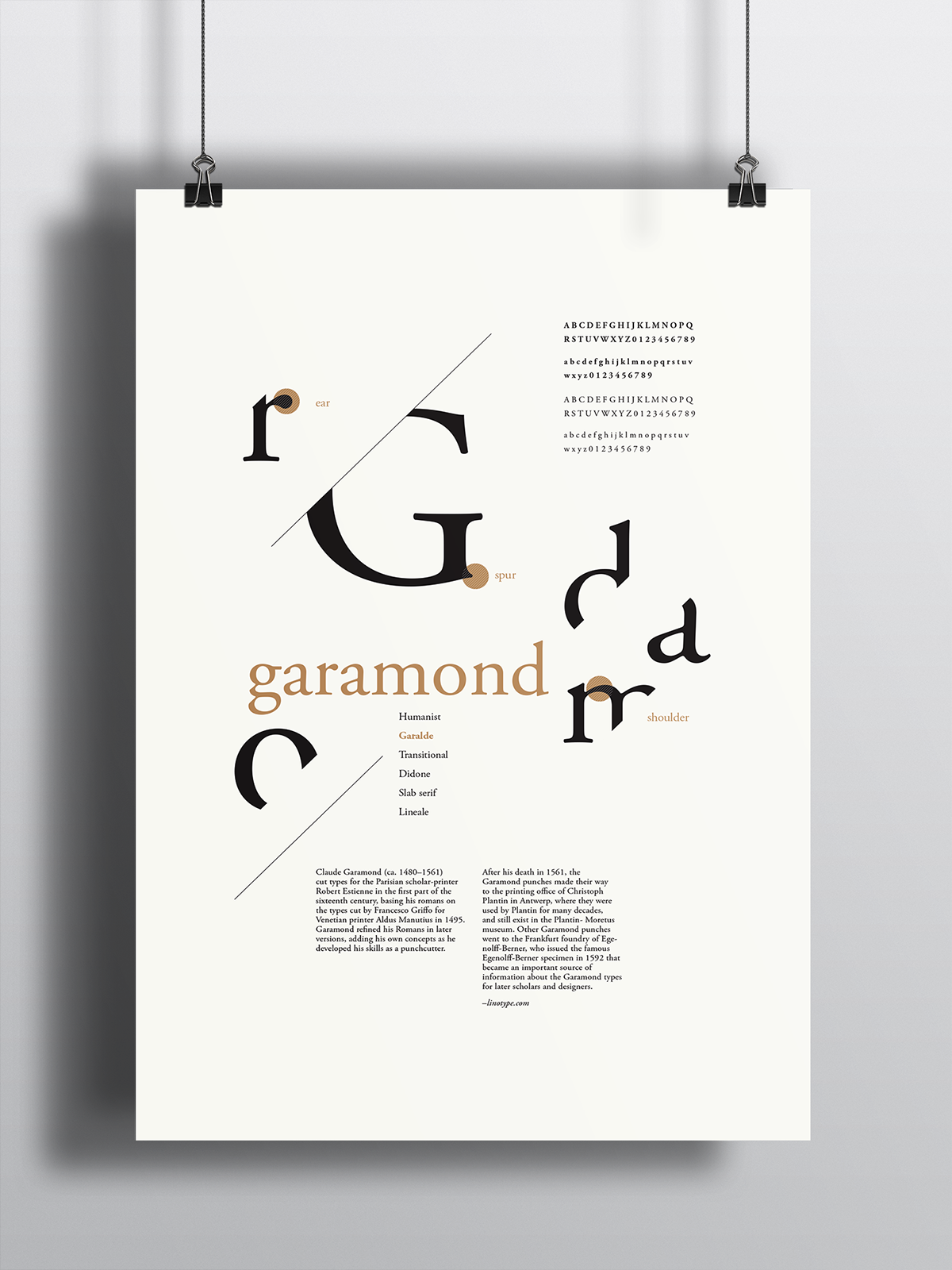 Type Anatomy Poster Series on Student Show