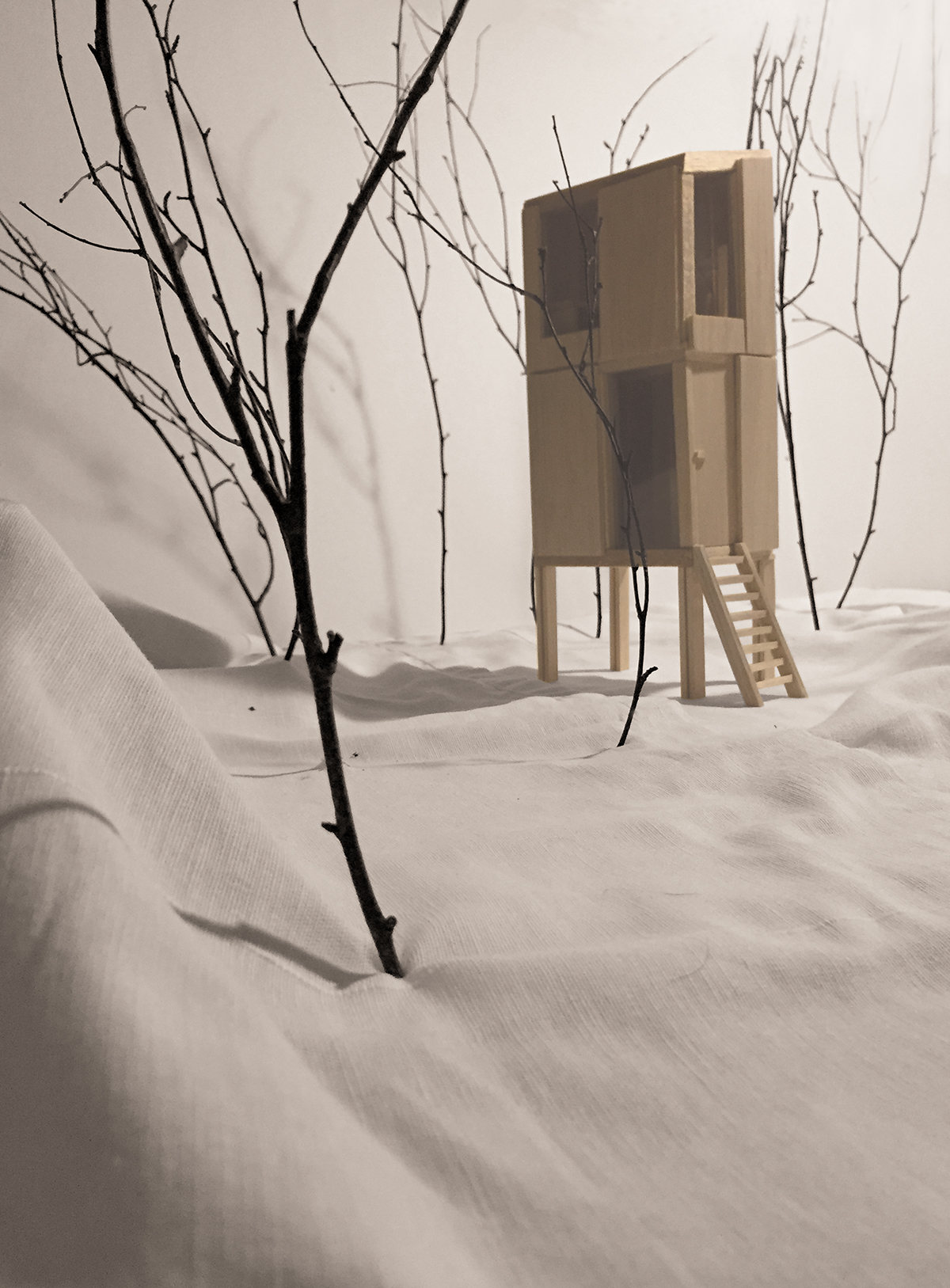 architecture wood forest geology small houses micro houses wood architecture