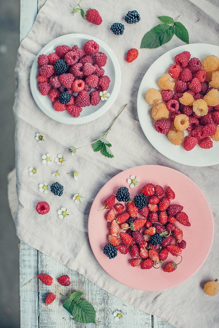 berry eco farm Food  natural organic photohraphy