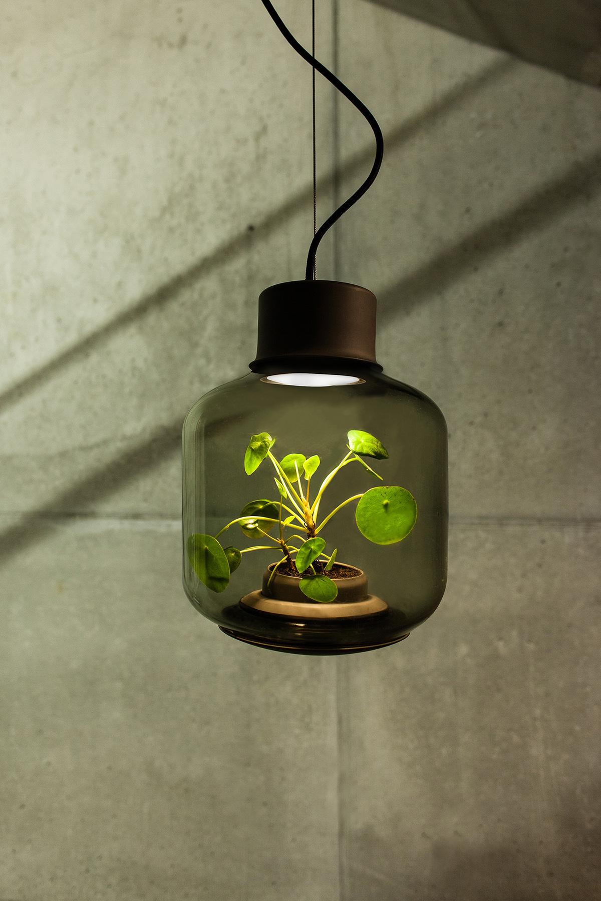 mygdal plant lamp on behance. Black Bedroom Furniture Sets. Home Design Ideas