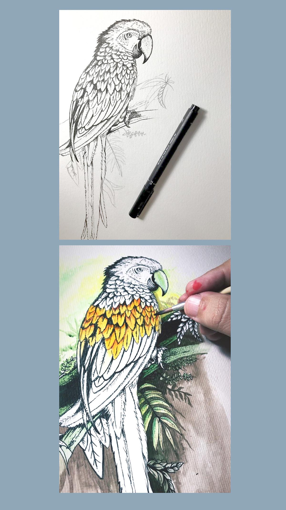 Image may contain: bird