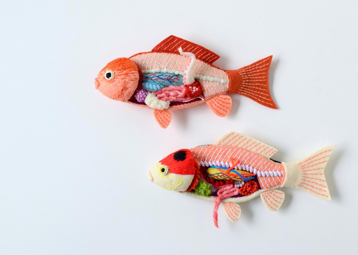 Image may contain: fish