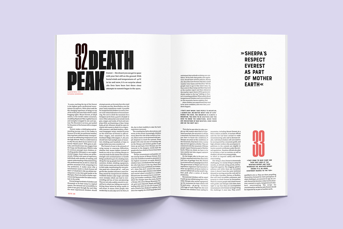 Adobe Portfolio ILLUSTRATION  editorial design  graphic design  magazine risography