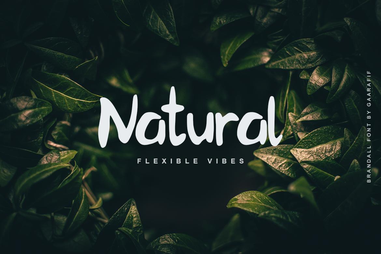 font Typeface bold brush Nature Food  thriller watermark vibes man