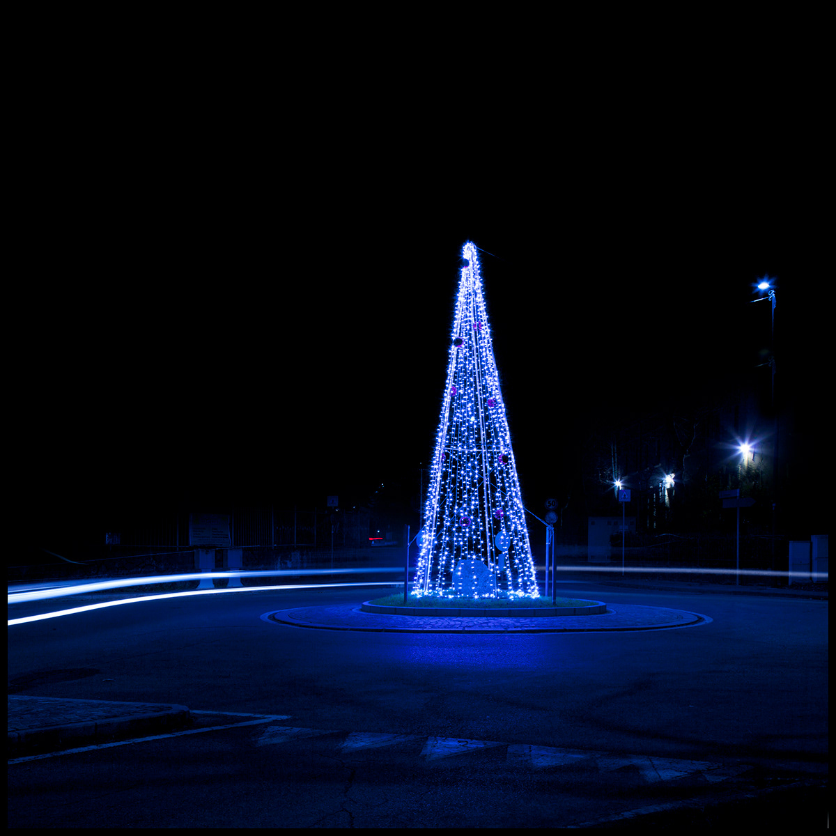 Image may contain: outdoor, light and christmas tree