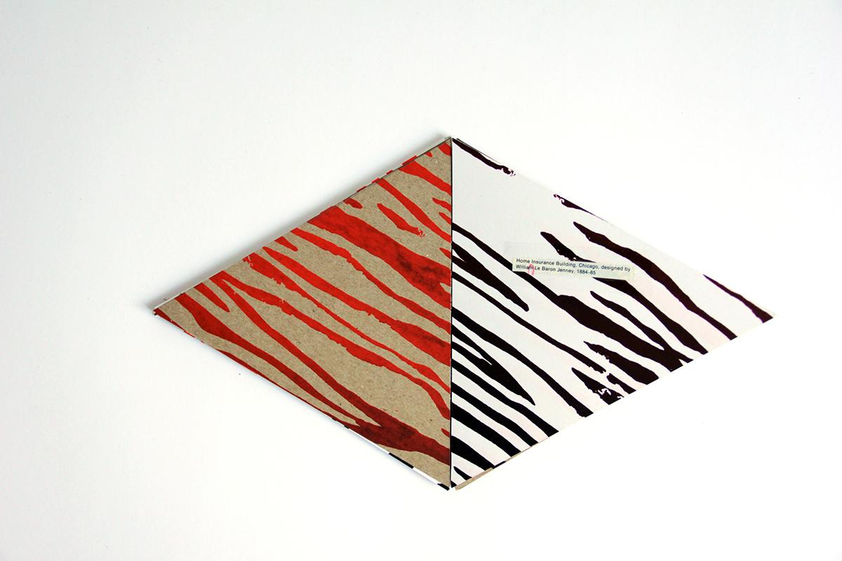 books clue secret zebra