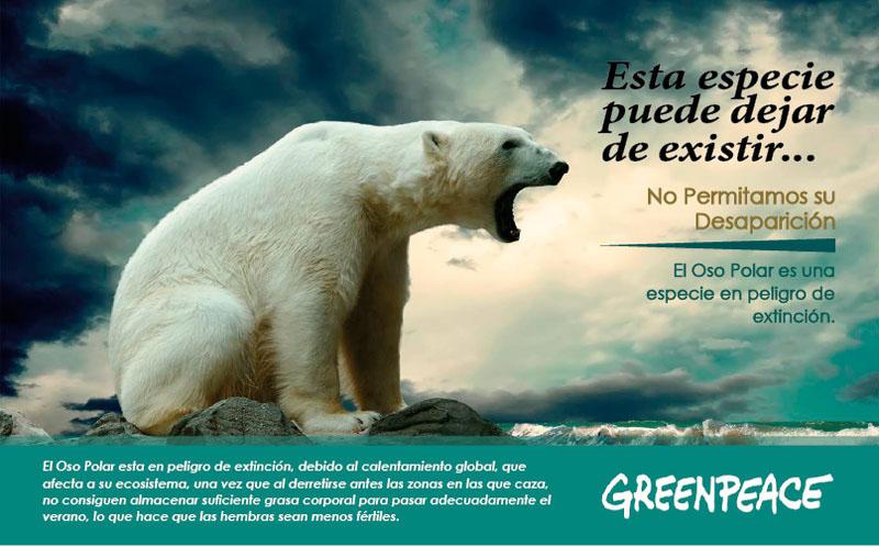 Afiches Animales En Peligro De Extinción On Behance