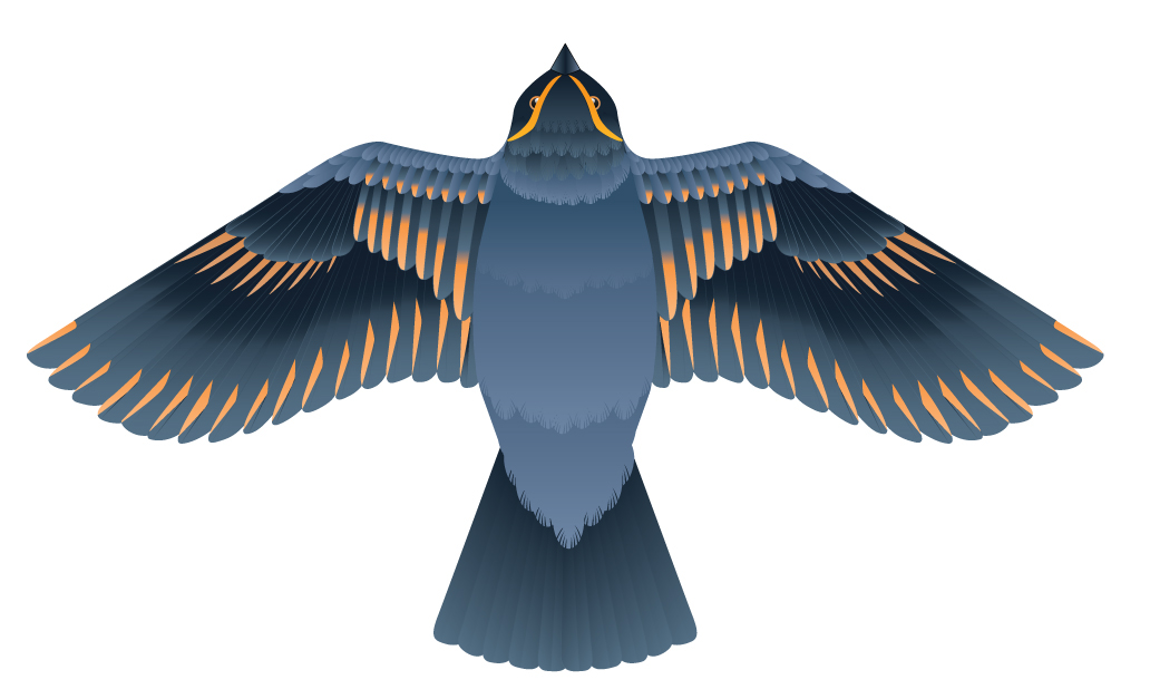 Press And Fold Birds That Fly On Behance