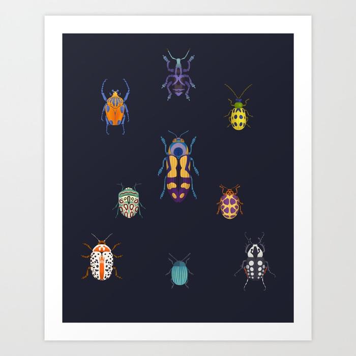 bugs beetles Insects entomology animals pattern design  surface design biology animal Nature
