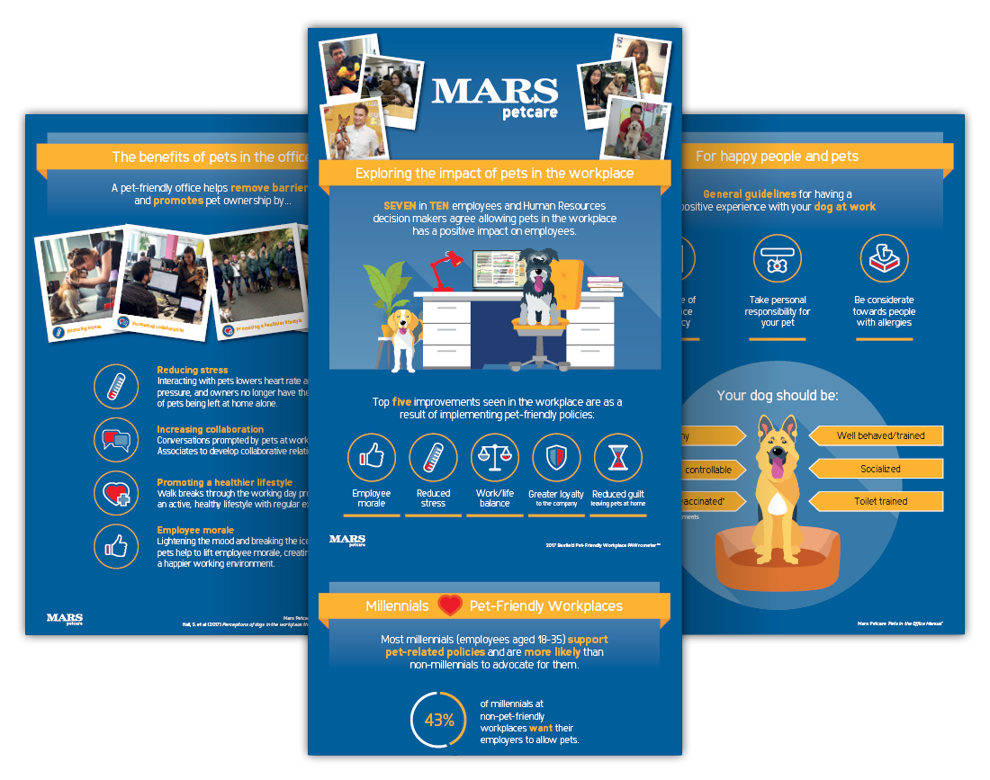 brand identity corporate communications Email Design infographic internal comms logo