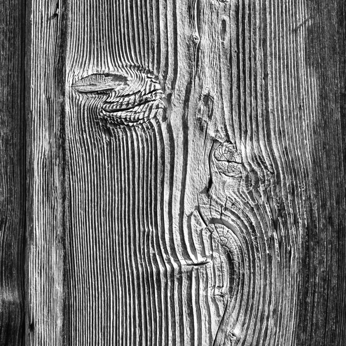 gebilde lines Linien natur