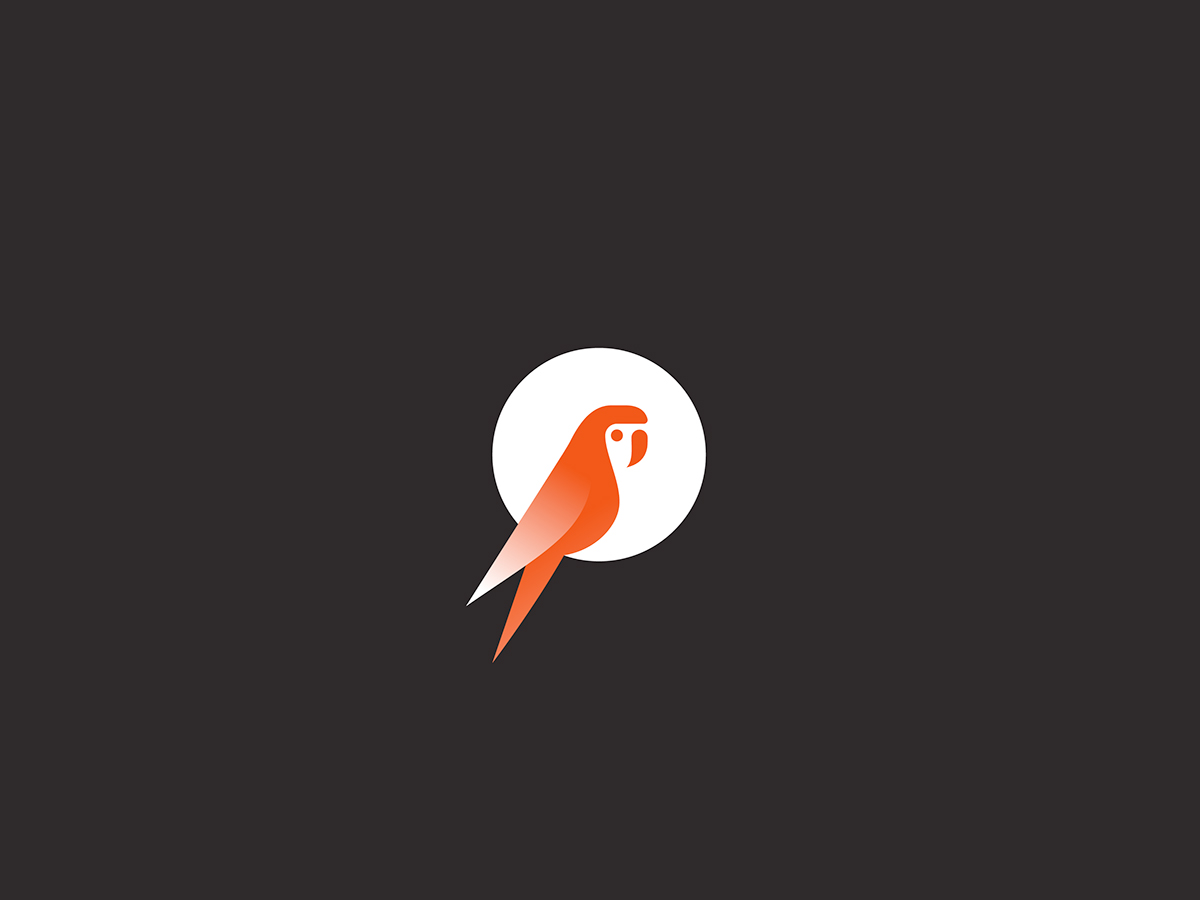 logo mark symbol identity brand design Nature animal swan stork eagle falcon owl earth Fly