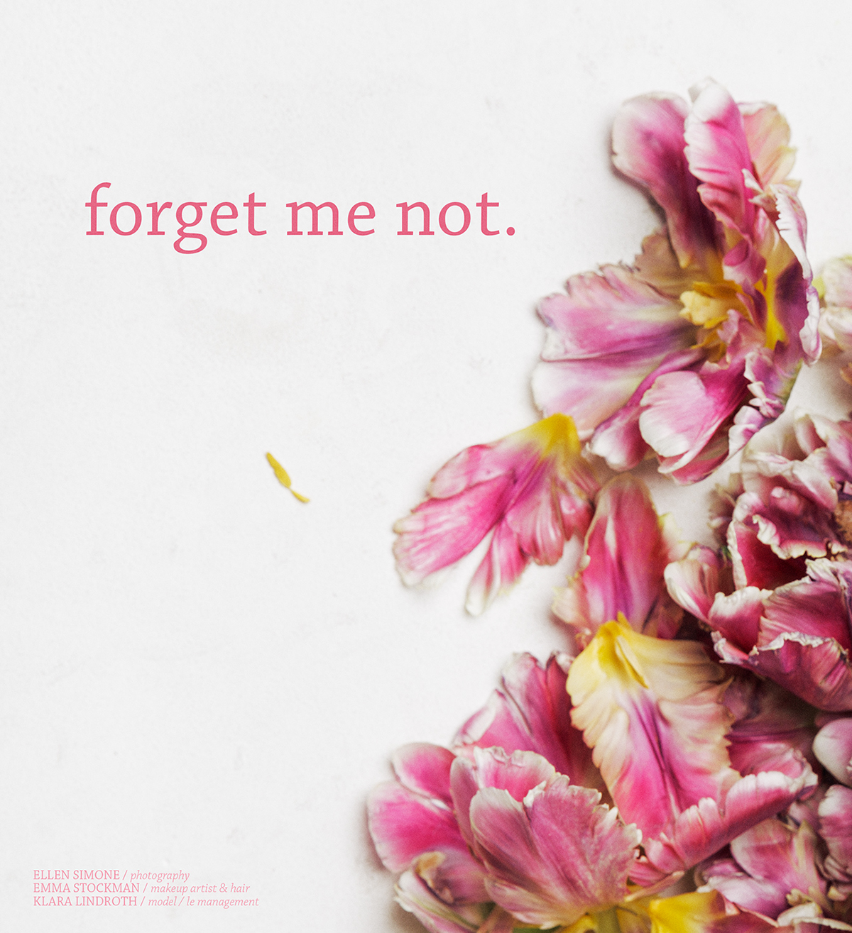 Forget Me Not For Lucys Magazine On Behance