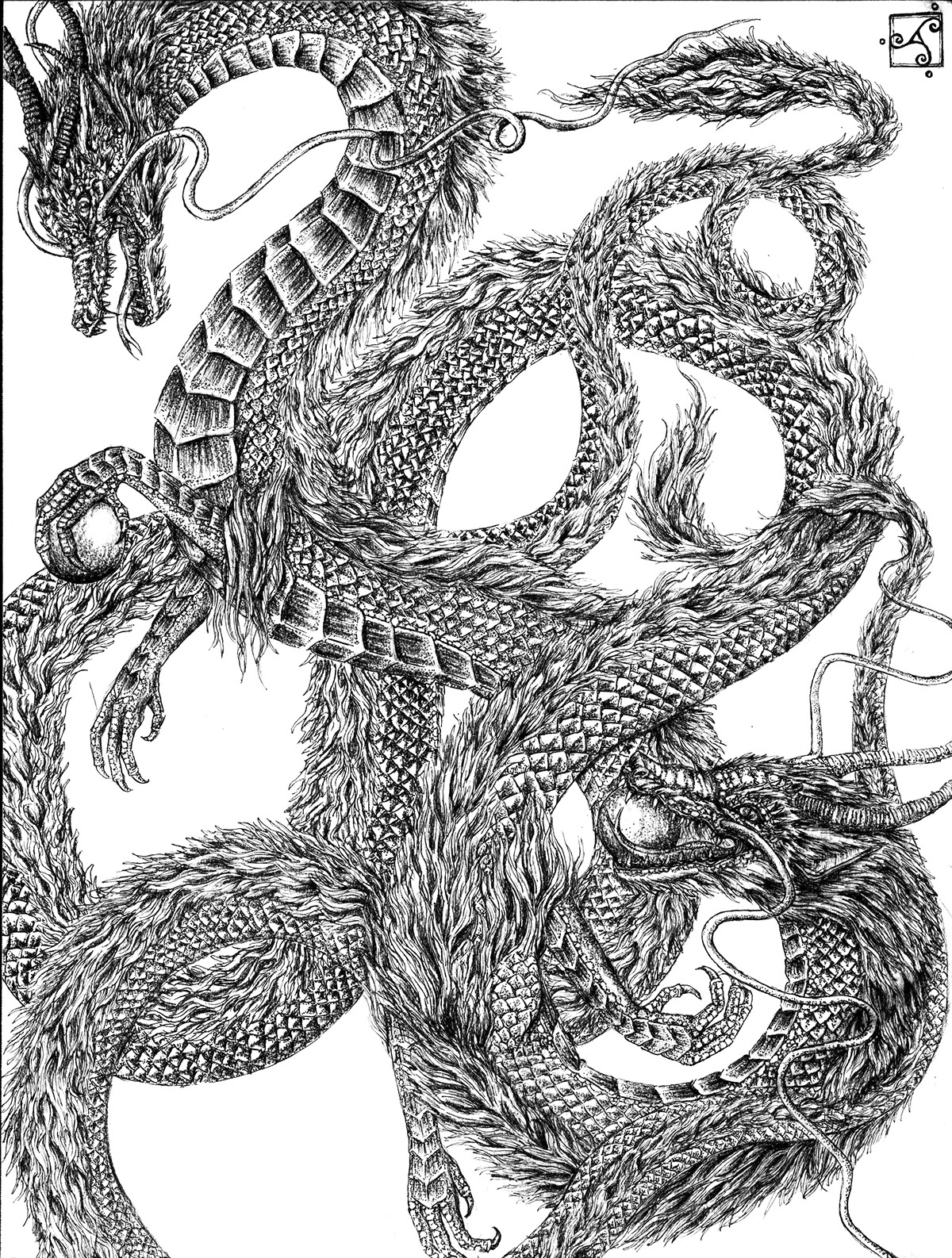 Naughty Dragon Portfolio