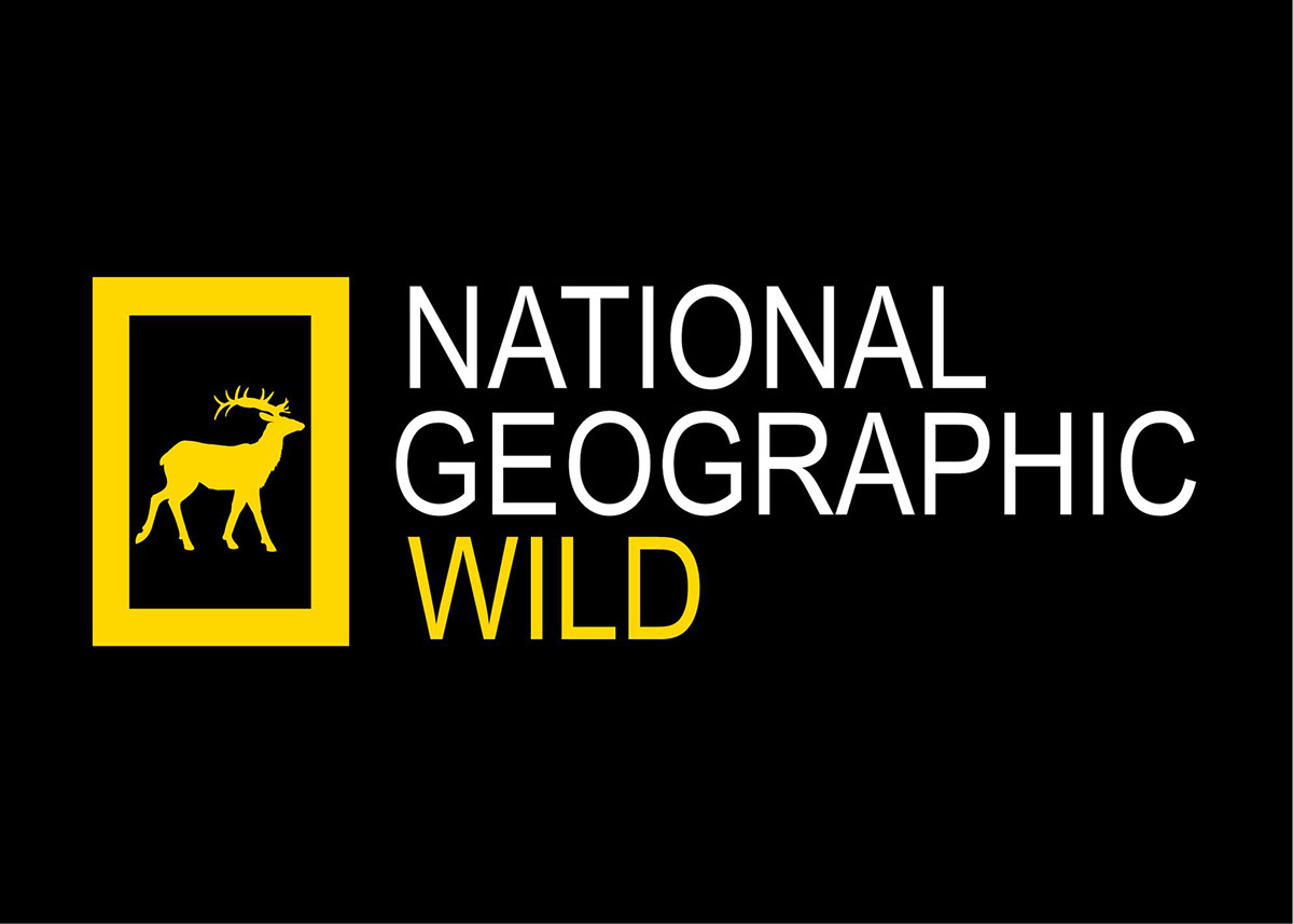 national geographic complete photography pdf download