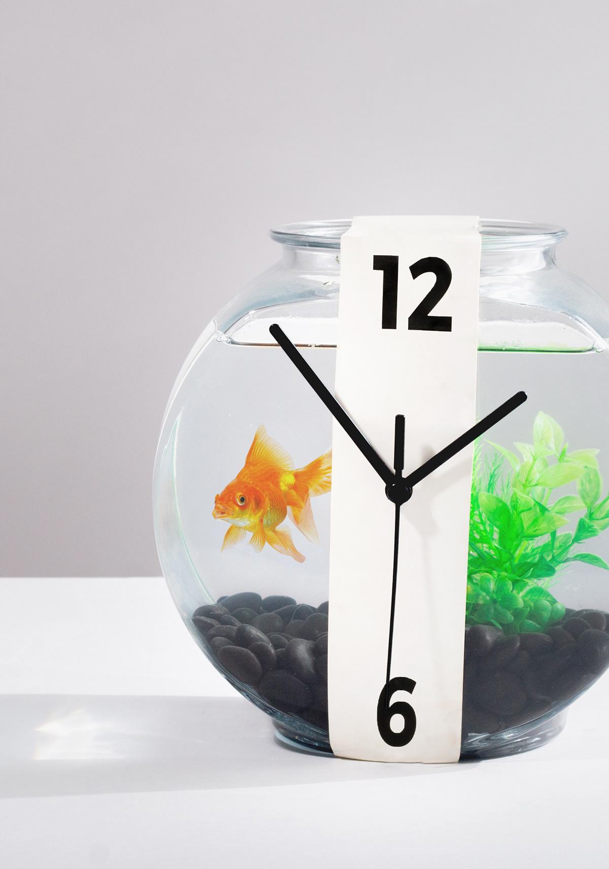 Image may contain: aquarium and clock