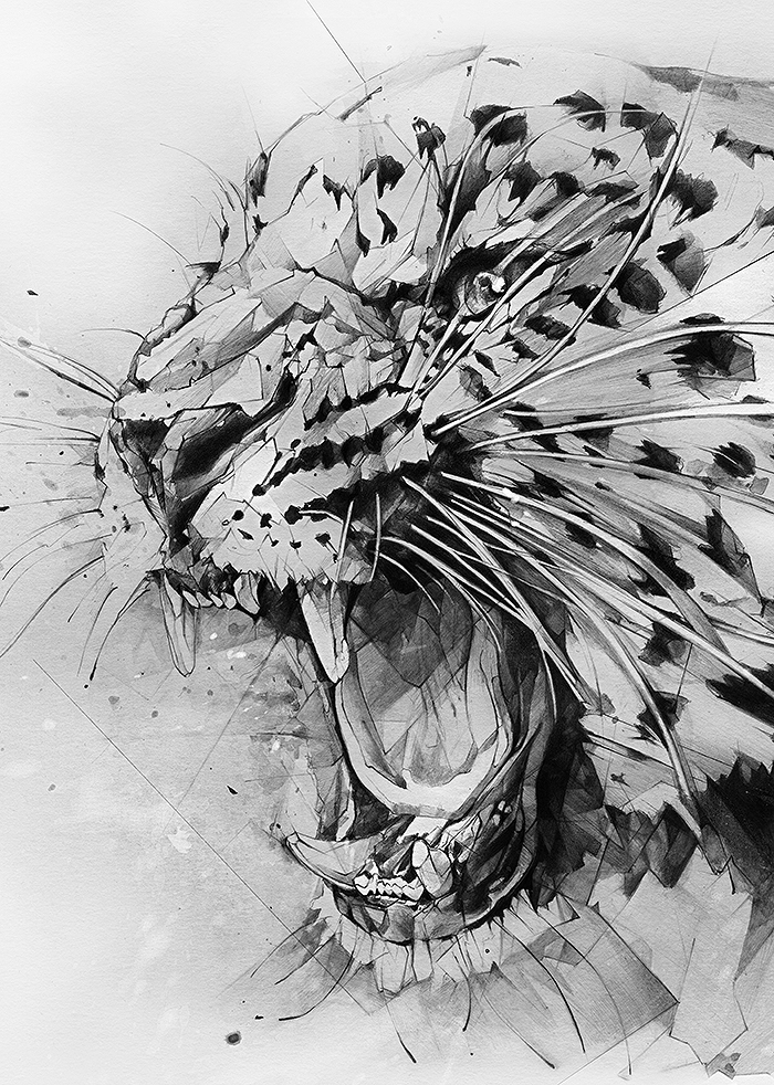 Derwent pencils watercolor graphite accobrands unionjack leopard wild wildcat water-soluble inktense