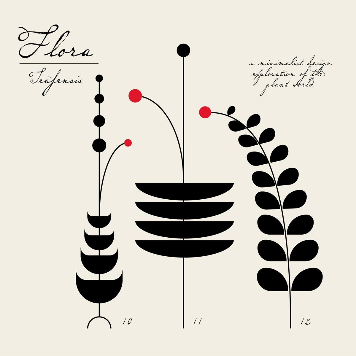 ILLUSTRATION  botany geometry Vector Illustration minmalist design plants branding  Flowers