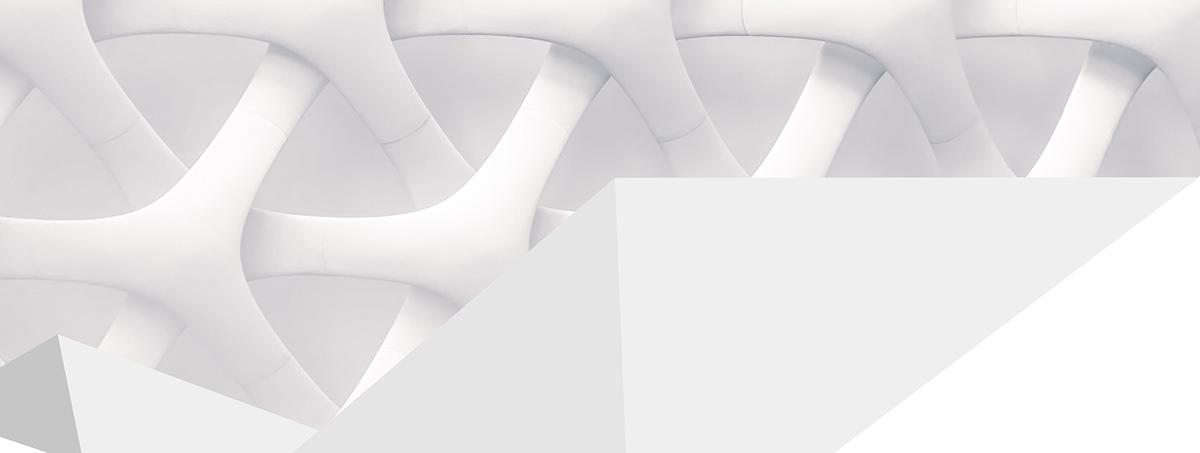 branding  identity Logotype motion origami  simplex