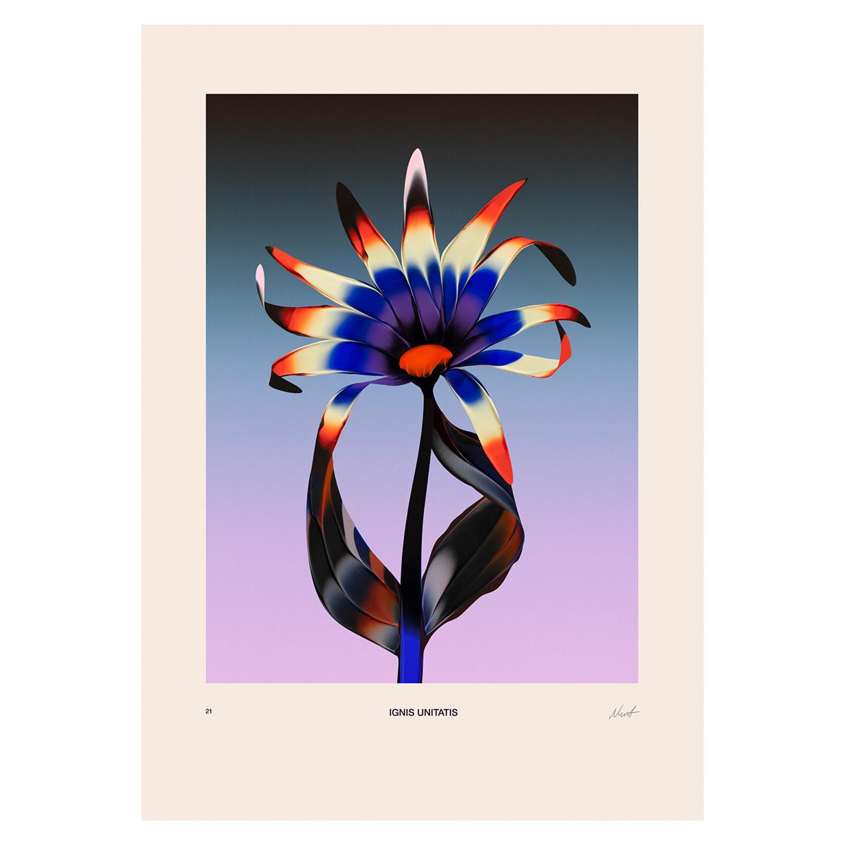 abstract illustration of a flower