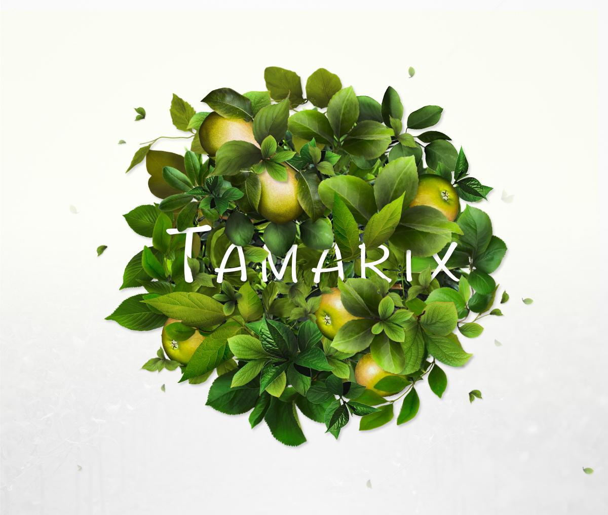 manipulation green Fruit
