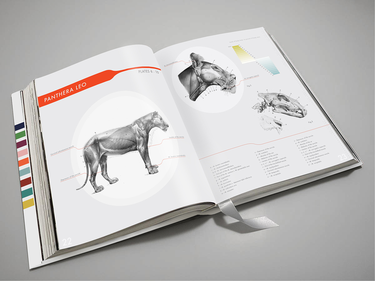 An Atlas Of Animal Anatomy Coffee Table Book On Student Show