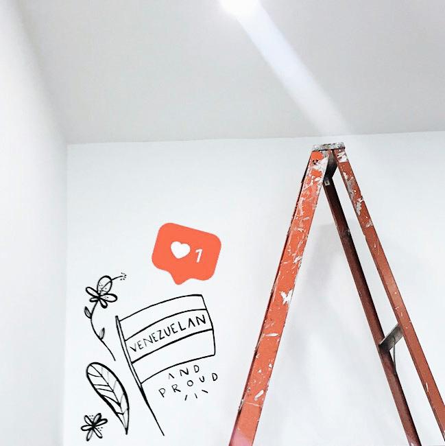 Mural art paint