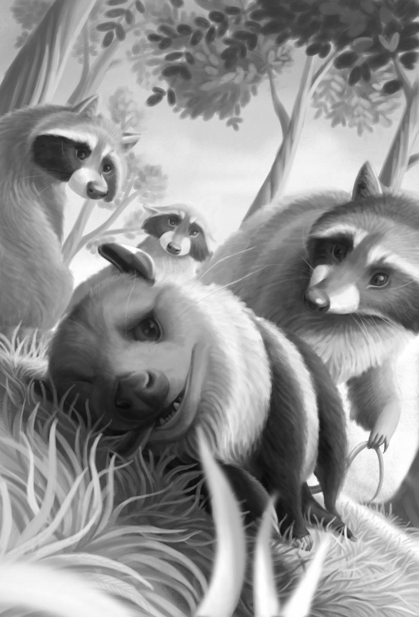 opossum boy book rat raccoon