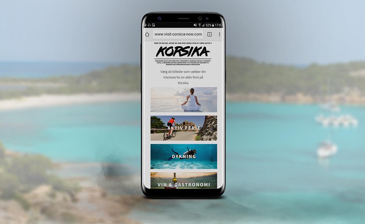 visual identity Travel corsica graphic design  posters Rollups Webdesign Commercials ad