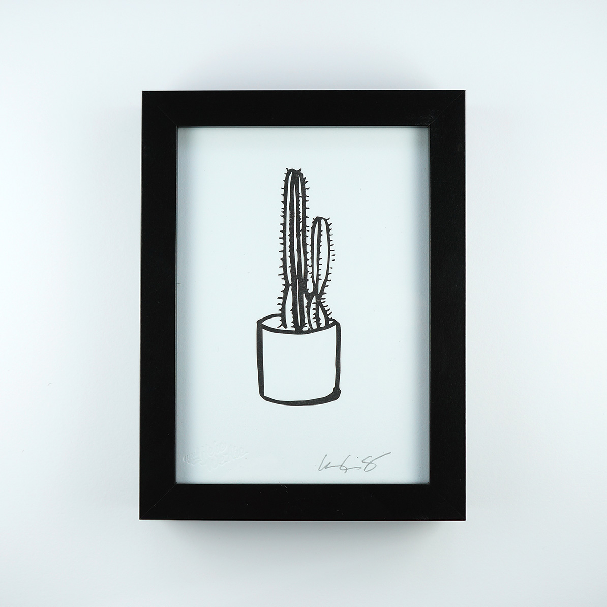 drawn illustrated cat art cactus black and white brush pen pen and ink
