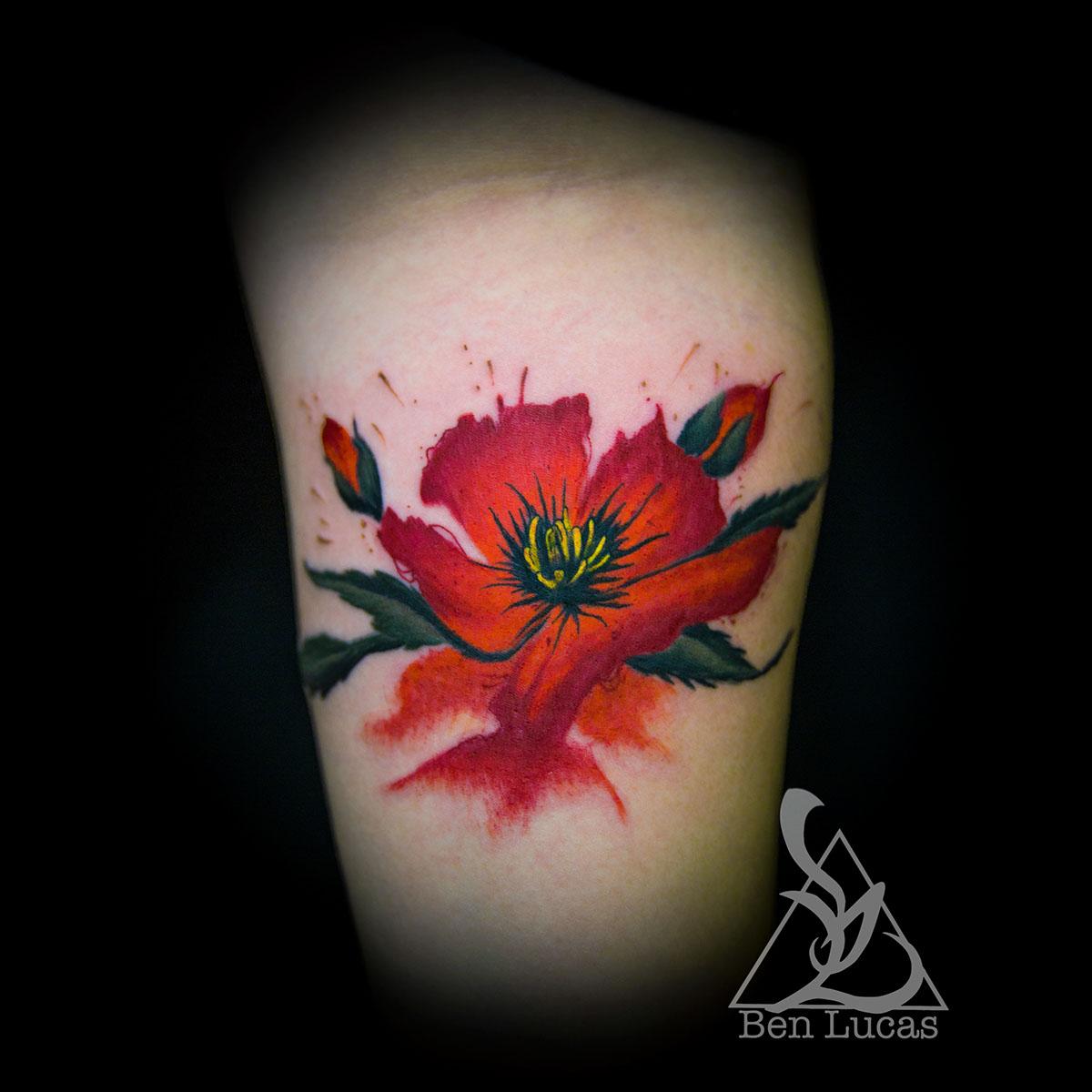 Watercolor Poppy On Behance