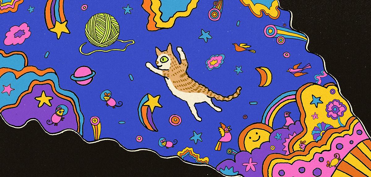Cat kitten cat sketch cat art sketch Drawing  Digital Art  creative ILLUSTRATION