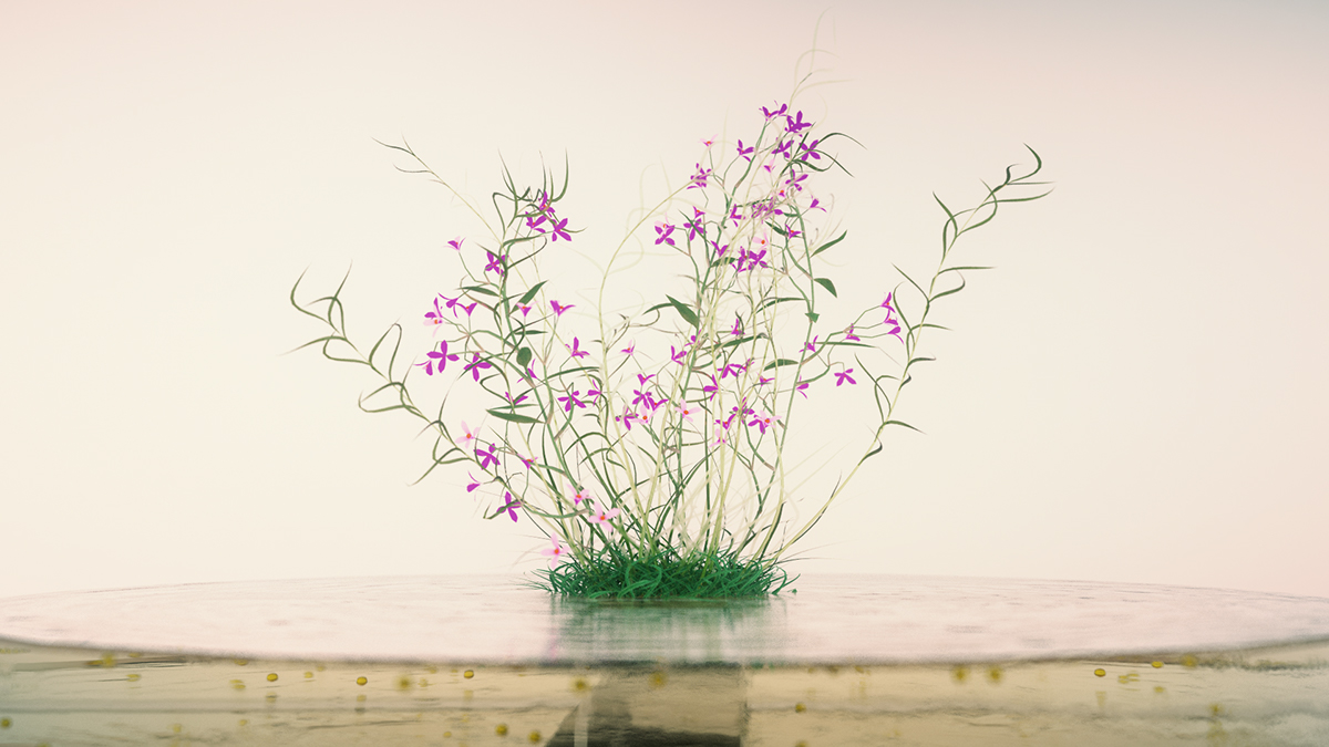 cinema 4d vray Plant Nature