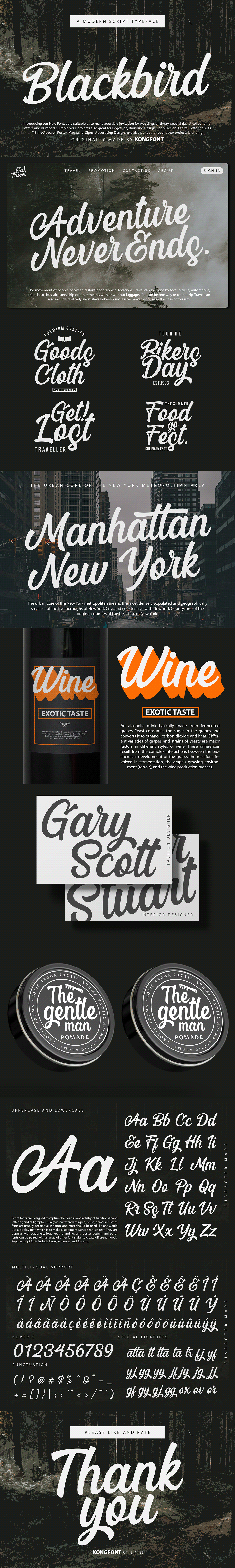 Birthday blackbird branding  font fonts Invitation Logotype Script wedding