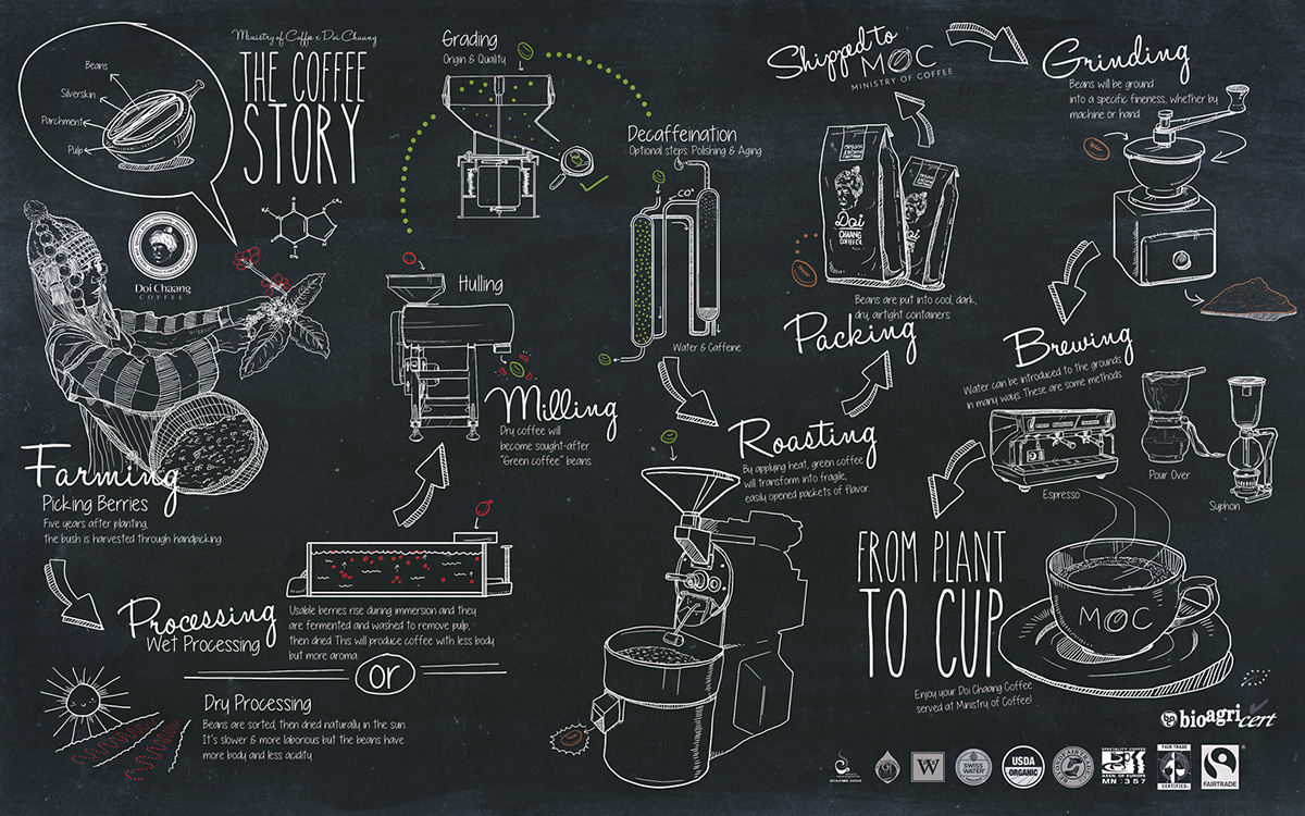 Ministry of coffee mural infographic menu design on for Complete the mural uncharted 3