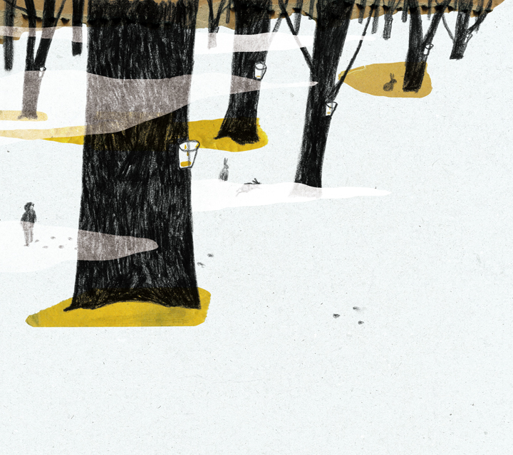 Illustration For Book (Apple Trees In My Backyard) On Behance