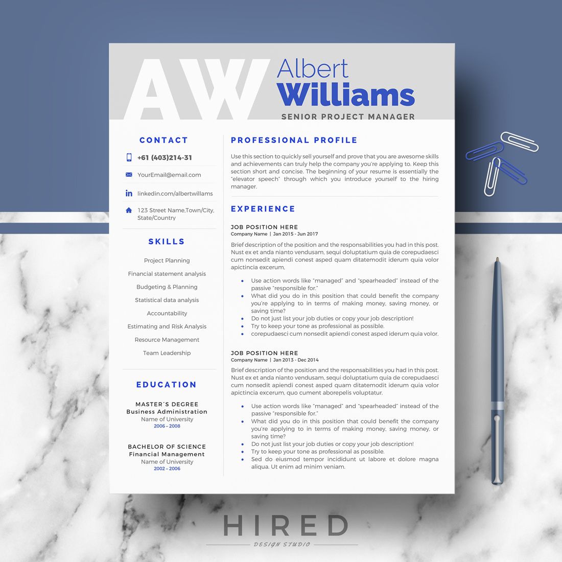 Professional Resume CV Template For Ms Word