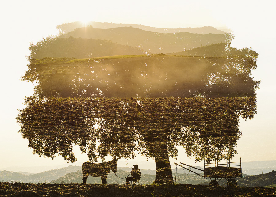 double exposure multiple exposure in-camera miranda plateau Portugal Travel Nature