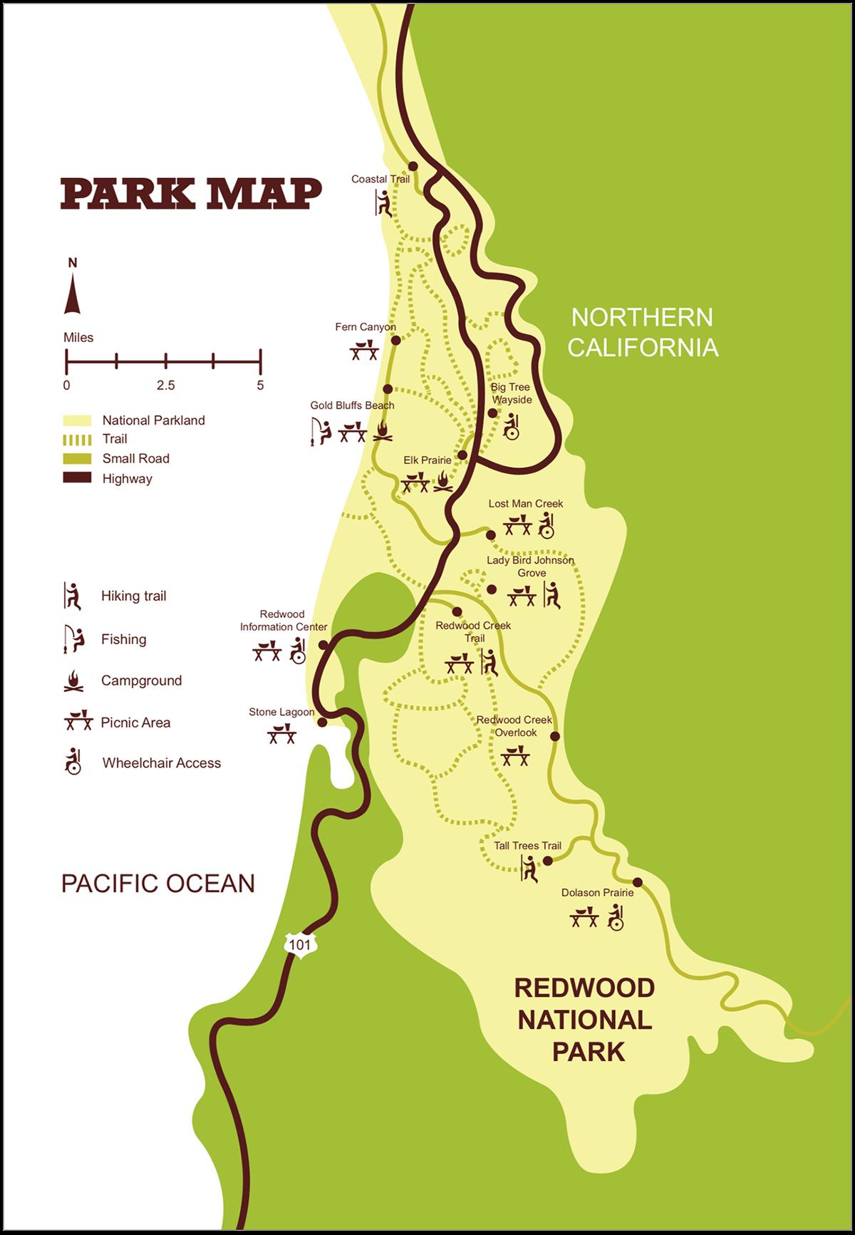 branding guide redwood national park
