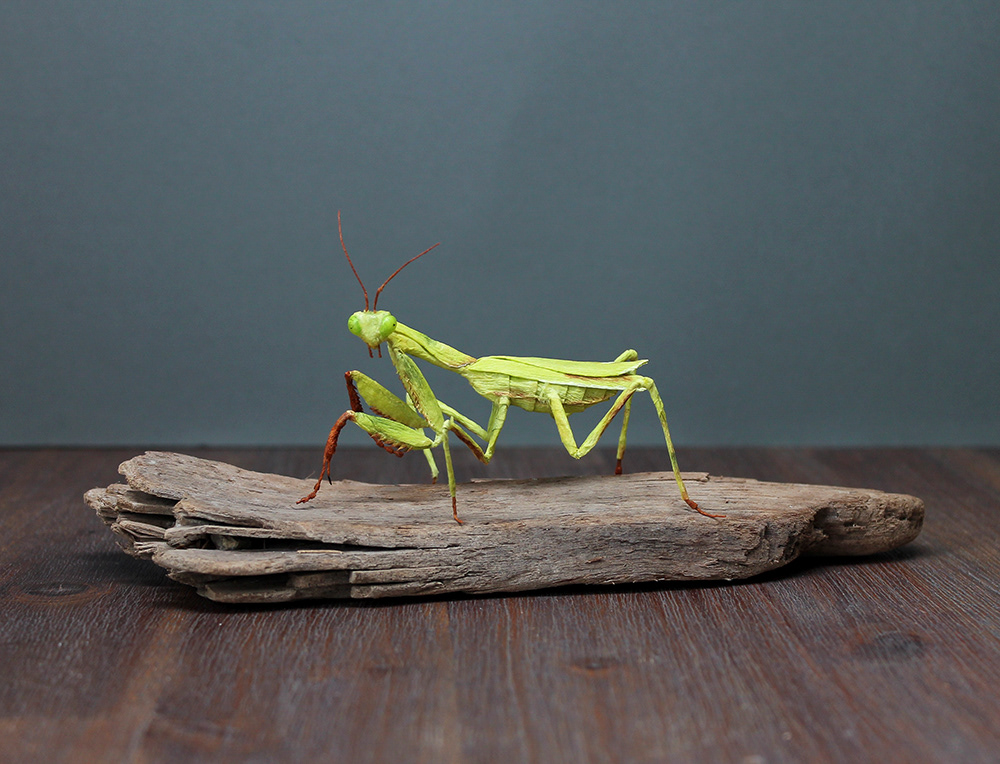 mantis crepe paper paper paper art insect paper insect paper sculpture lifelike naturalistic