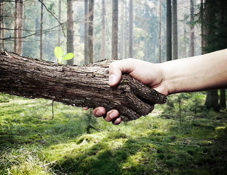 ecologico eco friendly knauf retoque arte