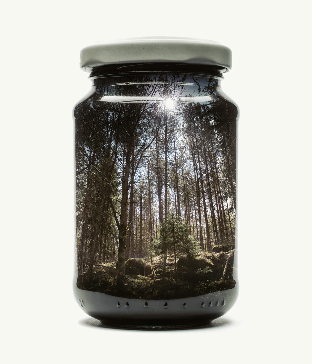 double exposure multiple exposure in-camera finland Nature jar mason jar childhood nostalgia dslr